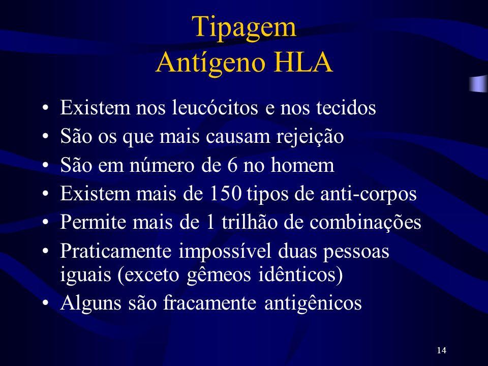 14 Tipagem Antígeno HLA Existem nos leucócitos e nos tecidos São os que mais causam rejeição São em número de 6 no homem Existem mais de 150 tipos de