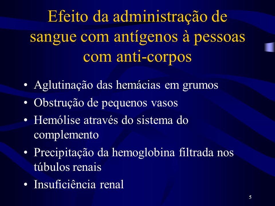 5 Efeito da administração de sangue com antígenos à pessoas com anti-corpos Aglutinação das hemácias em grumos Obstrução de pequenos vasos Hemólise at