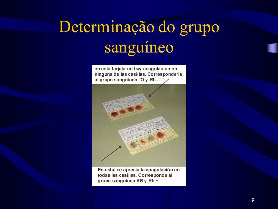 10 Determinação do grupo sanguíneo Grupo sanguineo ABABO Glóbulos rojos En la membrana Antígeno A Antígeno B Antígenos A y B No antígenos En el plasma Anti-BAnti-ANo anticuerpos Anti-A y Anti-B