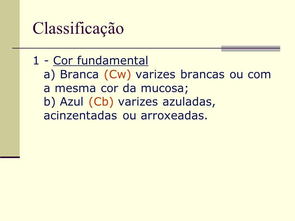 Classificação 1 - Cor fundamental a) Branca (Cw) varizes brancas ou com a mesma cor da mucosa; b) Azul (Cb) varizes azuladas, acinzentadas ou arroxead
