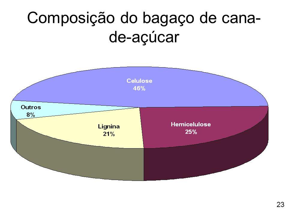23 Composição do bagaço de cana- de-açúcar