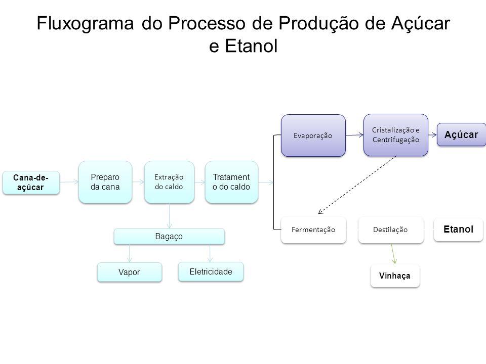 4 Programa Brasileiro do Álcool Segundo maior programa de uso comercial de etanol (18 bilhões de litros em 2007).