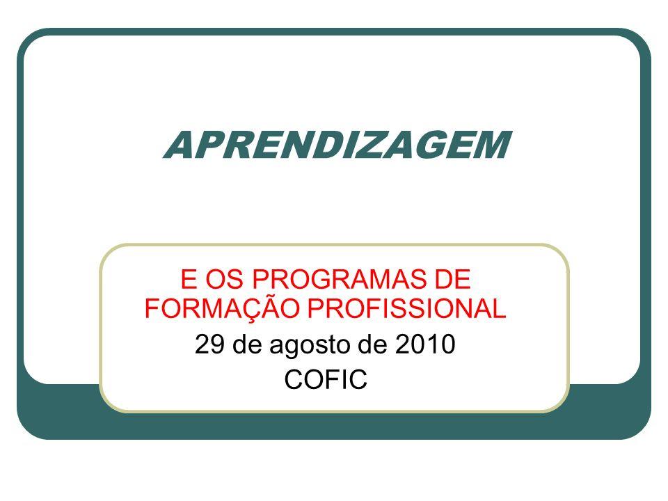 APRENDIZAGEM E OS PROGRAMAS DE FORMAÇÃO PROFISSIONAL 29 de agosto de 2010 COFIC