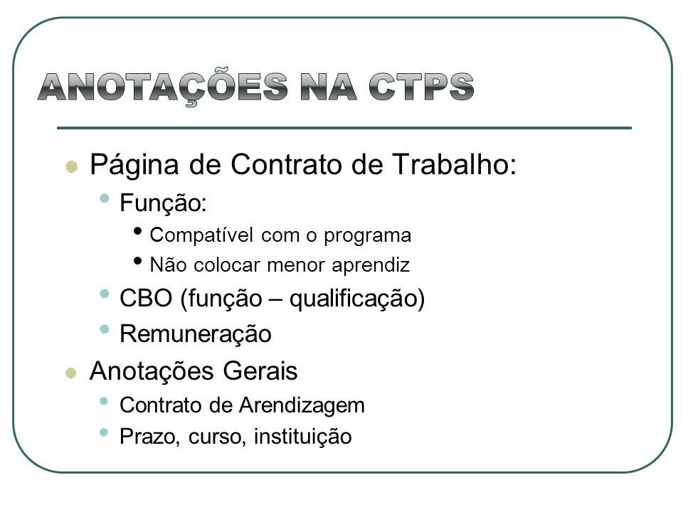 Página de Contrato de Trabalho: Função: Compatível com o programa Não colocar menor aprendiz CBO (função – qualificação) Remuneração Anotações Gerais