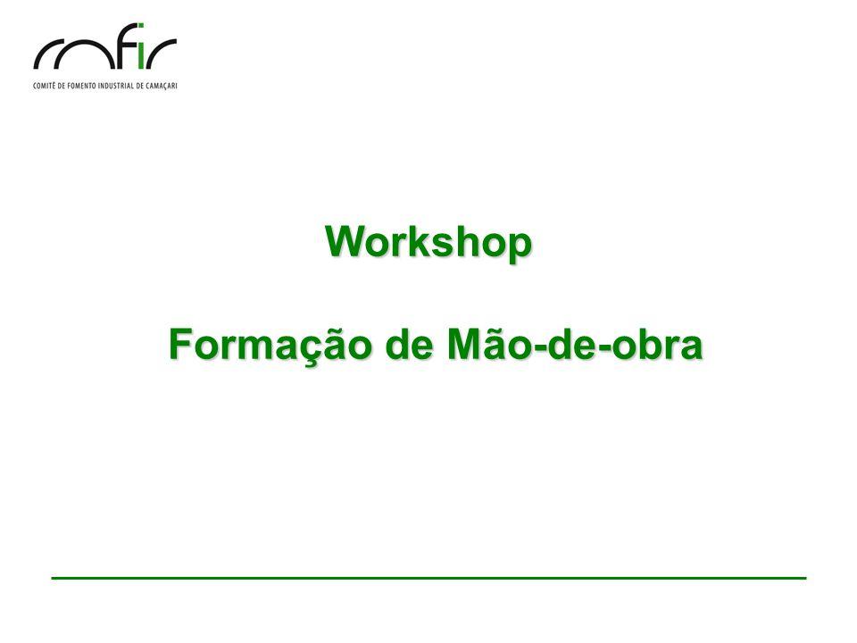 Workshop Formação de Mão-de-obra