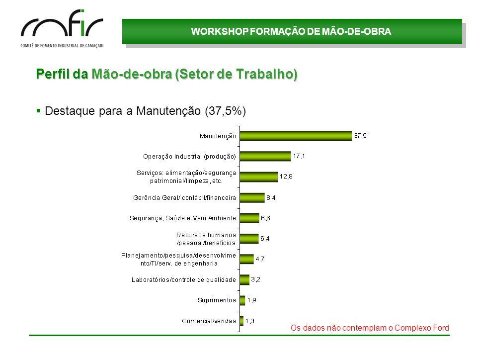 WORKSHOP FORMAÇÃO DE MÃO-DE-OBRA Perfil da Mão-de-obra (Setor de Trabalho) Destaque para a Manutenção (37,5%) Os dados não contemplam o Complexo Ford