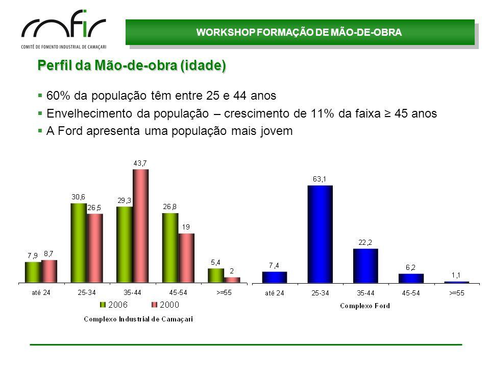 WORKSHOP FORMAÇÃO DE MÃO-DE-OBRA Perfil da Mão-de-obra (idade) 60% da população têm entre 25 e 44 anos Envelhecimento da população – crescimento de 11