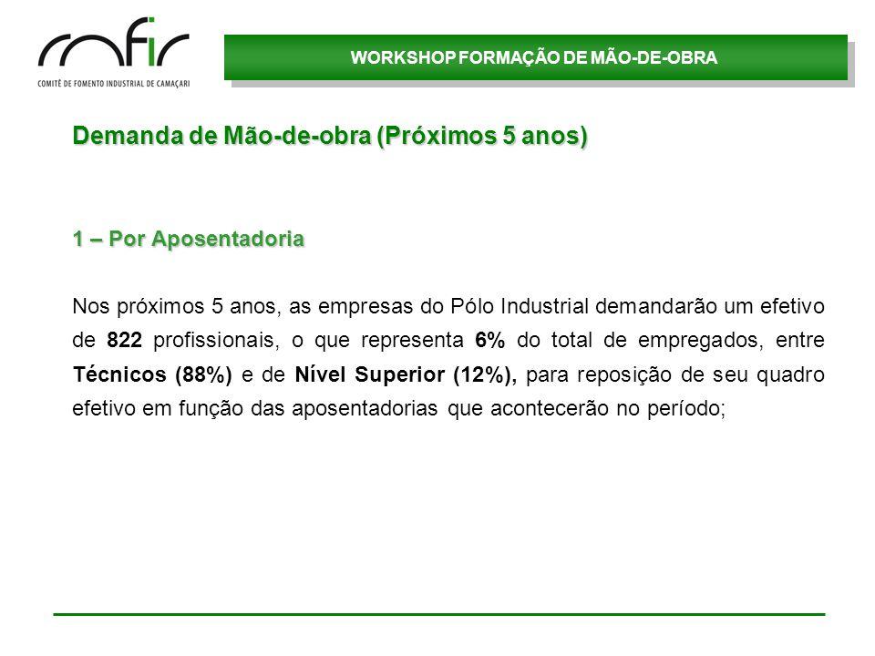 WORKSHOP FORMAÇÃO DE MÃO-DE-OBRA Demanda de Mão-de-obra (Próximos 5 anos) 1 – Por Aposentadoria Nos próximos 5 anos, as empresas do Pólo Industrial de