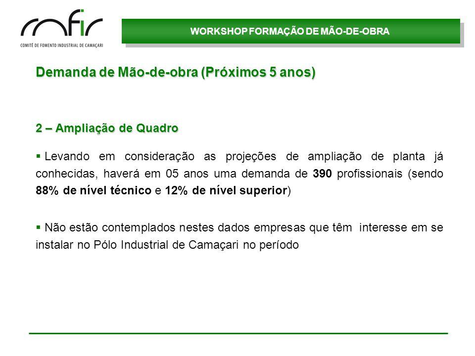 WORKSHOP FORMAÇÃO DE MÃO-DE-OBRA Demanda de Mão-de-obra (Próximos 5 anos) 2 – Ampliação de Quadro Levando em consideração as projeções de ampliação de