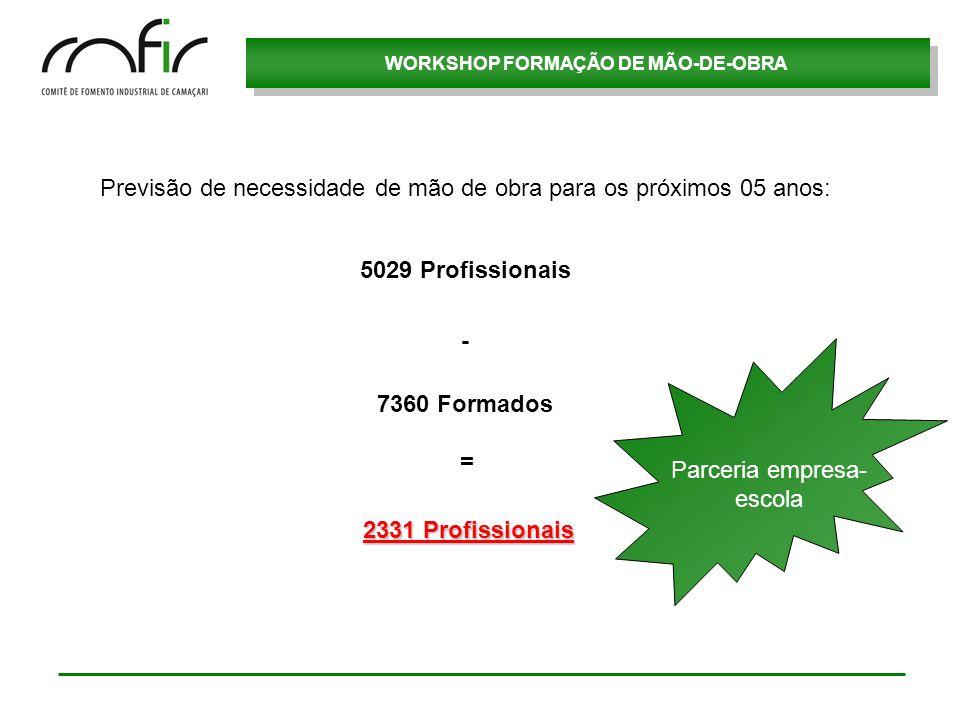 WORKSHOP FORMAÇÃO DE MÃO-DE-OBRA Previsão de necessidade de mão de obra para os próximos 05 anos: 5029 Profissionais 7360 Formados 2331 Profissionais
