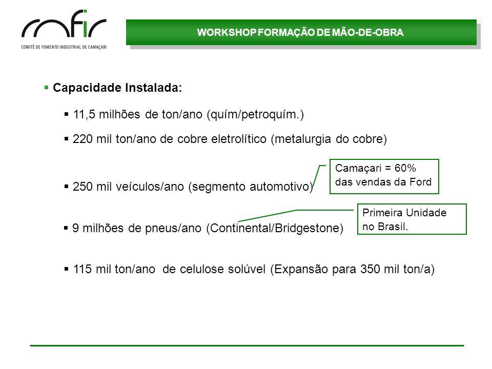 WORKSHOP FORMAÇÃO DE MÃO-DE-OBRA Capacidade Instalada: 250 mil veículos/ano (segmento automotivo) 220 mil ton/ano de cobre eletrolítico (metalurgia do