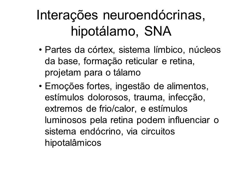 Interações neuroendócrinas, hipotálamo, SNA Partes da córtex, sistema límbico, núcleos da base, formação reticular e retina, projetam para o tálamo Em