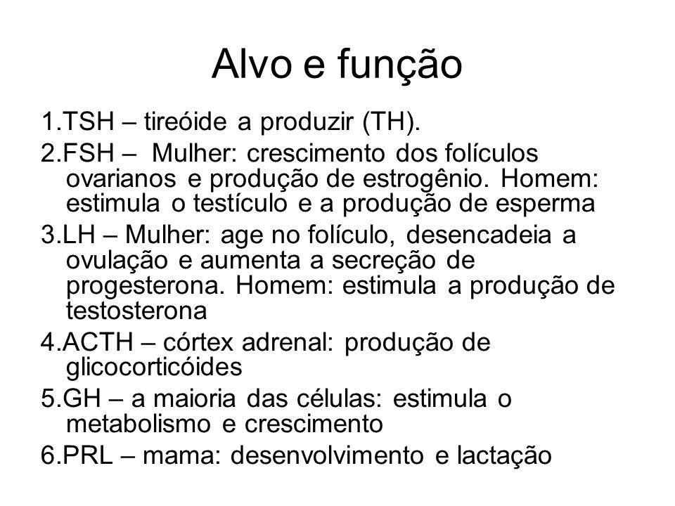 Alvo e função 1.TSH – tireóide a produzir (TH). 2.FSH – Mulher: crescimento dos folículos ovarianos e produção de estrogênio. Homem: estimula o testíc