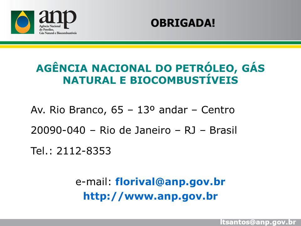 AGÊNCIA NACIONAL DO PETRÓLEO, GÁS NATURAL E BIOCOMBUSTÍVEIS Av. Rio Branco, 65 – 13º andar – Centro 20090-040 – Rio de Janeiro – RJ – Brasil Tel.: 211