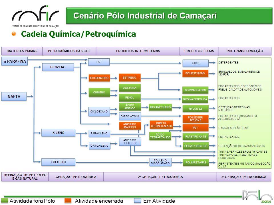 Pólo Industrial de Camaçari t/ano * atual ** estimado Produtos Orgânicos Básicos Cenário Pólo Industrial de Camaçari