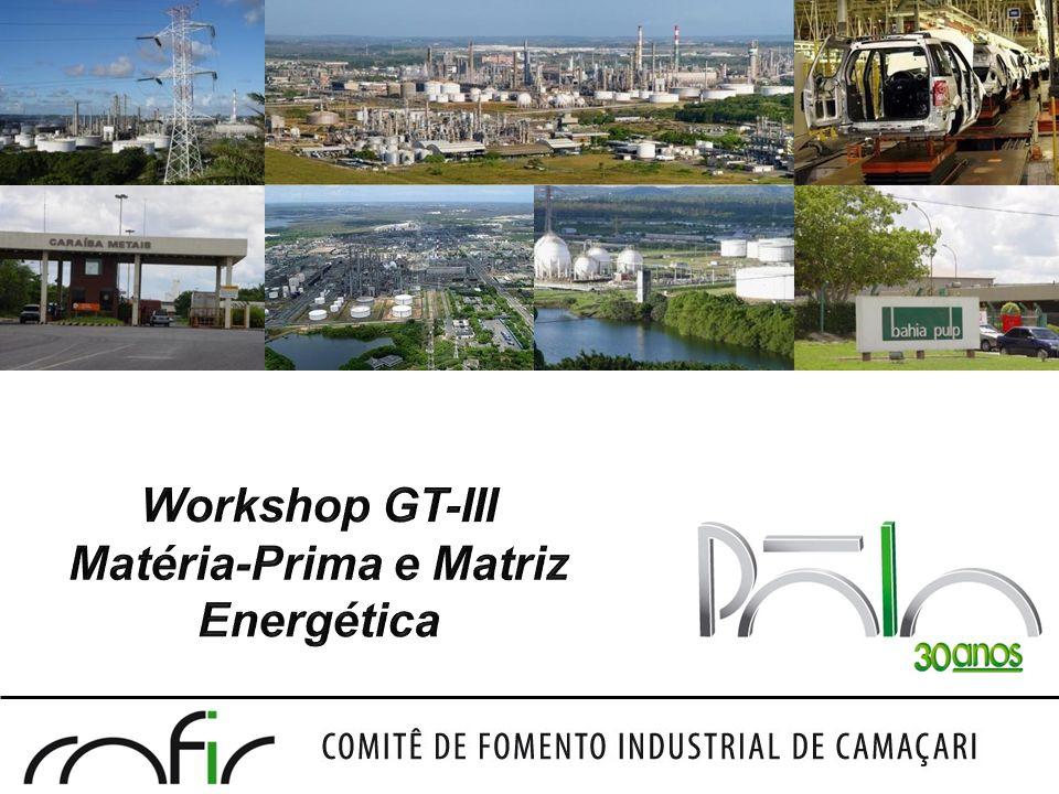 Pólo Industrial de Camaçari Workshop do GT-III Agenda 8:30 – 8:40Abertura 8:40 – 9:00Objetivo e metodologia de trabalho 9:00 – 9:50Cadeia Química/Petroquímica/Fertilizantes 9:50 – 10:10Cadeia Metalúrgica 10:10 – 10:30Coffee Break 10:30 – 11:00Cadeia da Celulose 11:00 – 11:10Cadeia Automotiva 11:10 – 12:00Cenário de Insumos Energéticos 12:00Conclusões/Proposições/Encerramento