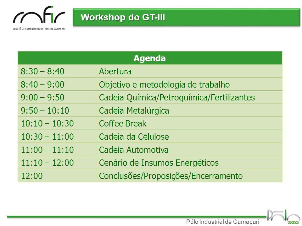 Pólo Industrial de Camaçari Workshop do GT-III Agenda 8:30 – 8:40Abertura 8:40 – 9:00Objetivo e metodologia de trabalho 9:00 – 9:50Cadeia Química/Petr