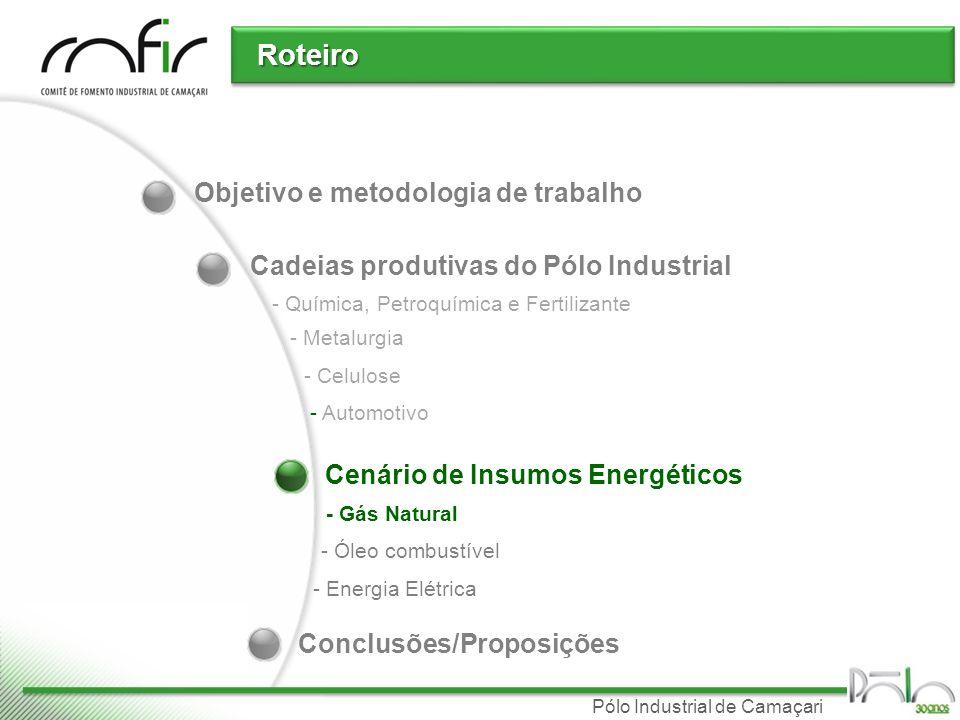 Pólo Industrial de Camaçari Objetivo e metodologia de trabalho Cadeias produtivas do Pólo Industrial Roteiro - Química, Petroquímica e Fertilizante -