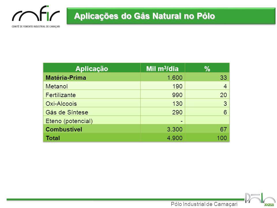 Pólo Industrial de Camaçari Oferta de Gás Natural Bahia Bahia maior produtor de GN no Nordeste 2007: 6,4 milhões m 3 /d (56% do Nordeste) Tendências Manati: Produção de 8 milhões m 3 /dia entre 7 e 10 anos Recôncavo: Declínio da produção Possibilidade de restrição futura Presença de nitrogênio restringe o uso como matéria-prima Possibilidade de restrição futura Presença de nitrogênio restringe o uso como matéria-prima Plano Petrobras 2008-2012 Novos investimentos concentrados na região Sudeste GNL: Pecém(CE) e Baia de Guanabara(RJ) em 2008 – Foco Termelétrica GASENE em 2010