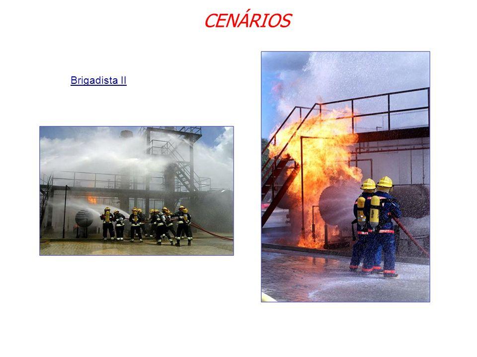 CENÁRIOS Brigadista II