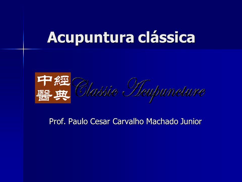 Acupuntura clássica Prof. Paulo Cesar Carvalho Machado Junior