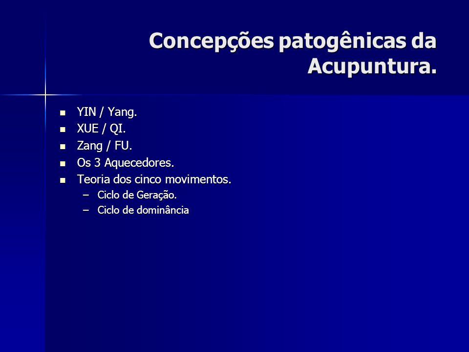 Concepções patogênicas da Acupuntura. YIN / Yang. YIN / Yang. XUE / QI. XUE / QI. Zang / FU. Zang / FU. Os 3 Aquecedores. Os 3 Aquecedores. Teoria dos
