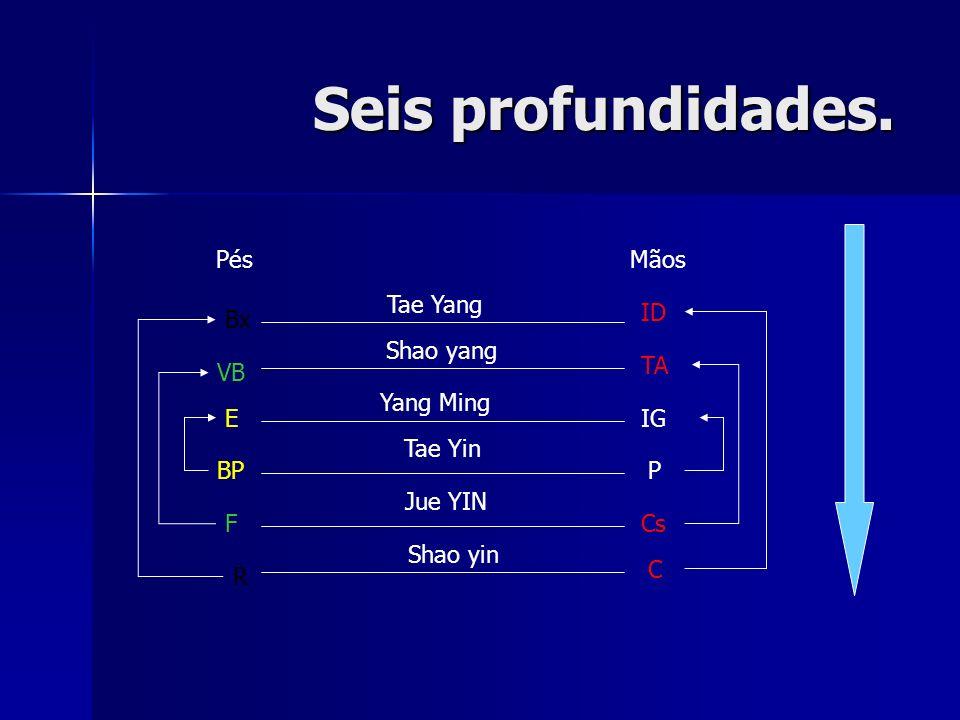 Seis profundidades. ID TA IG P Cs C R F E BP VB Bx Tae Yang Shao yang Yang Ming Tae Yin Jue YIN Shao yin PésMãos