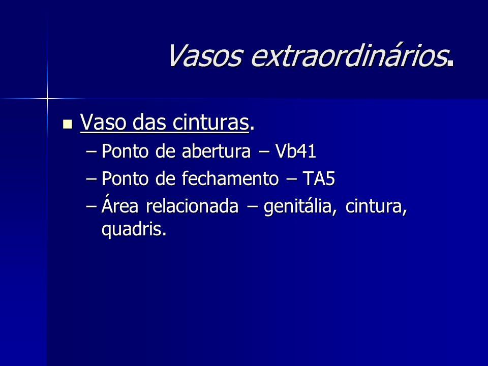 Vasos extraordinários. Vaso das cinturas. Vaso das cinturas. –Ponto de abertura – Vb41 –Ponto de fechamento – TA5 –Área relacionada – genitália, cintu