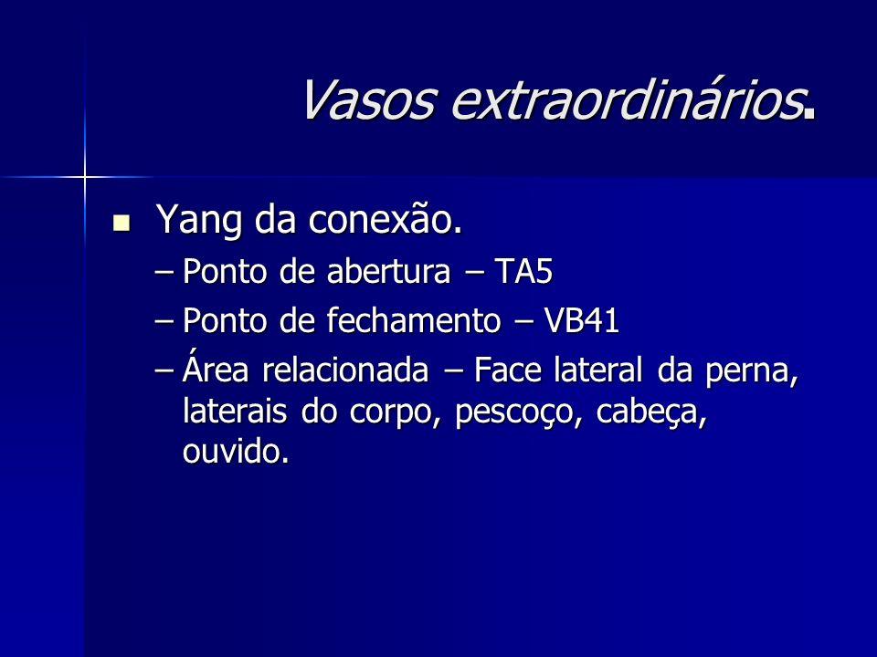 Vasos extraordinários. Yang da conexão. Yang da conexão. –Ponto de abertura – TA5 –Ponto de fechamento – VB41 –Área relacionada – Face lateral da pern