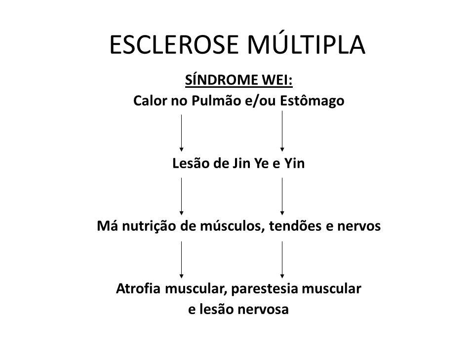 ESCLEROSE MÚLTIPLA SÍNDROME WEI: Calor no Pulmão e/ou Estômago Lesão de Jin Ye e Yin Má nutrição de músculos, tendões e nervos Atrofia muscular, pares