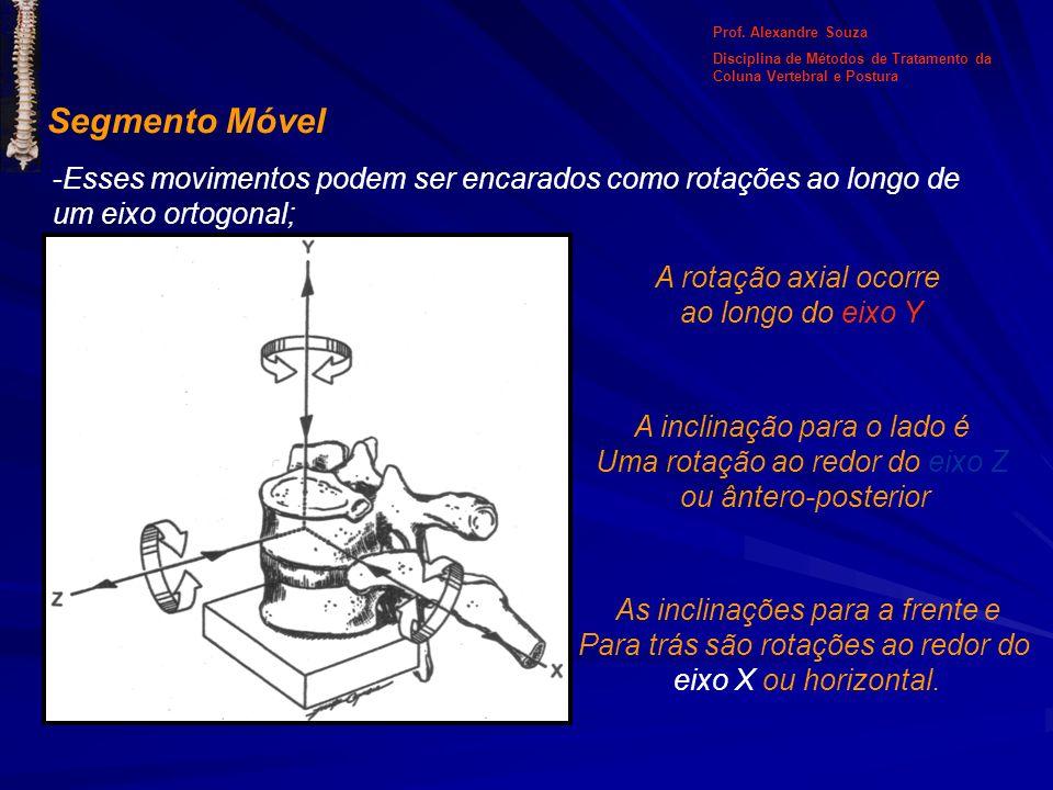 Segmento Móvel -Esses movimentos podem ser encarados como rotações ao longo de um eixo ortogonal; A rotação axial ocorre ao longo do eixo Y A inclinaç