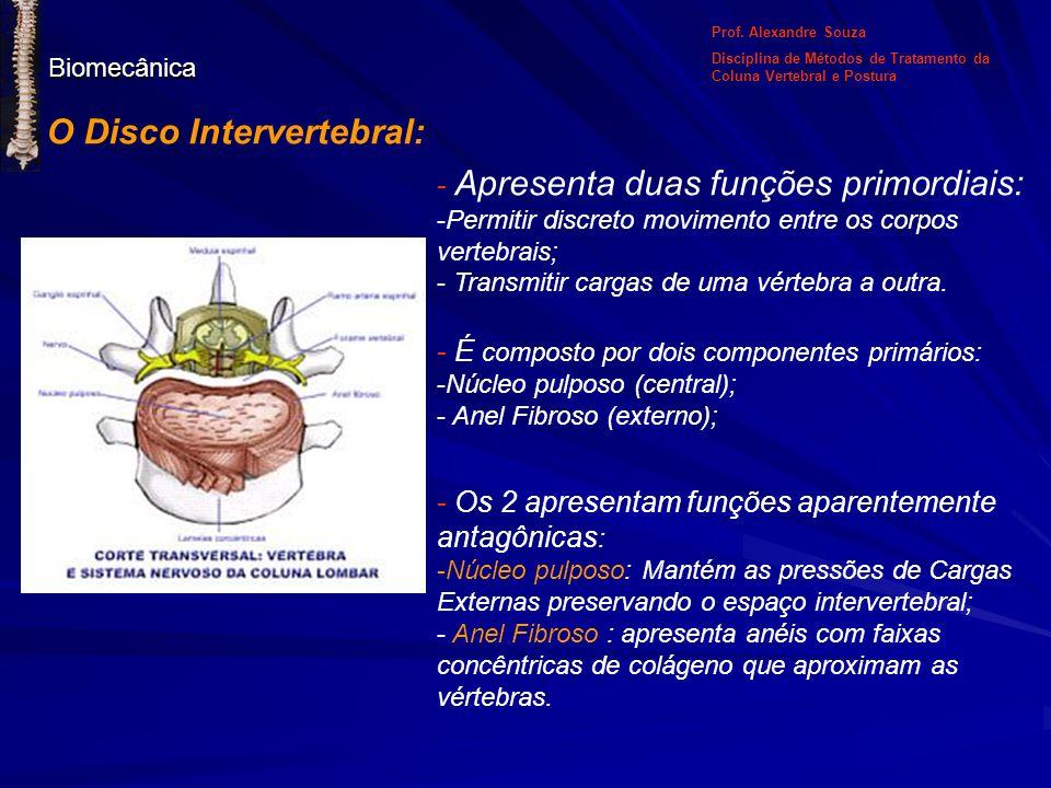 Biomecânica O Disco Intervertebral: - Apresenta duas funções primordiais: -Permitir discreto movimento entre os corpos vertebrais; - Transmitir cargas