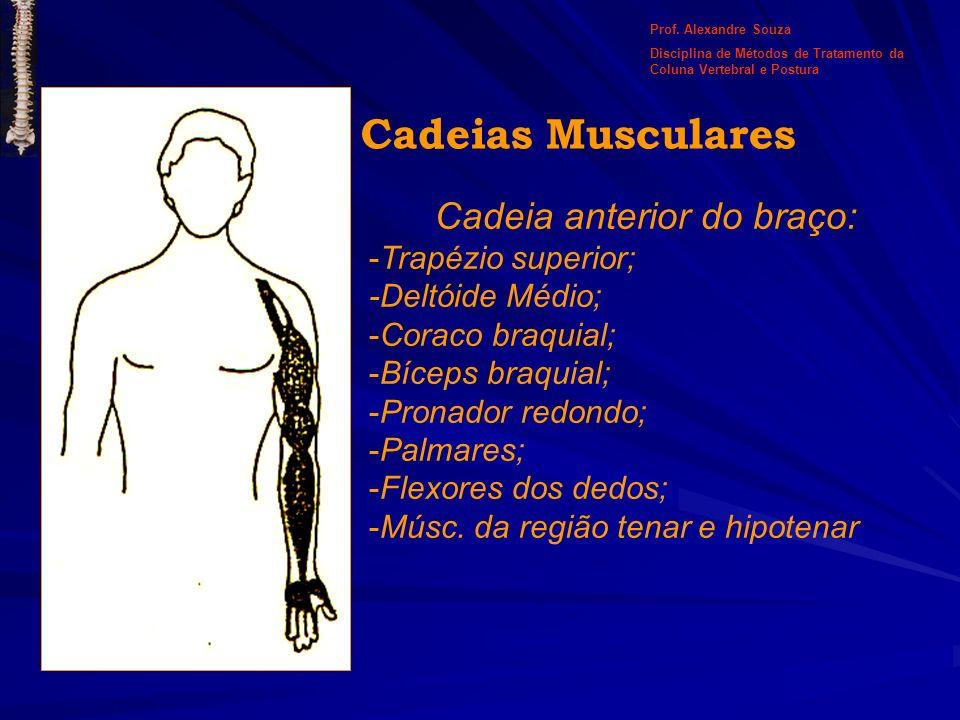 Cadeia anterior do braço: -Trapézio superior; -Deltóide Médio; -Coraco braquial; -Bíceps braquial; -Pronador redondo; -Palmares; -Flexores dos dedos;
