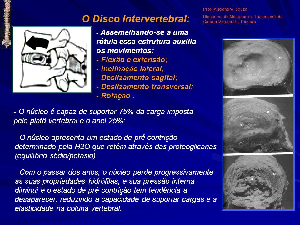 O Disco Intervertebral: - Assemelhando-se a uma rótula essa estrutura auxilia os movimentos: - Flexão e extensão; - Inclinação lateral; - Deslizamento
