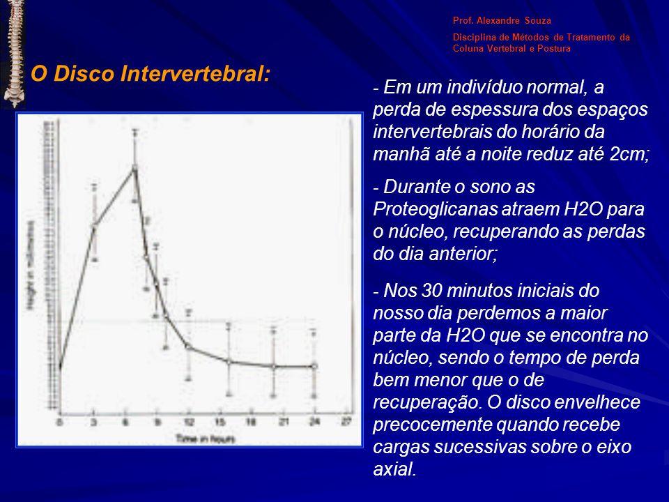 O Disco Intervertebral: - Em um indivíduo normal, a perda de espessura dos espaços intervertebrais do horário da manhã até a noite reduz até 2cm; - Du