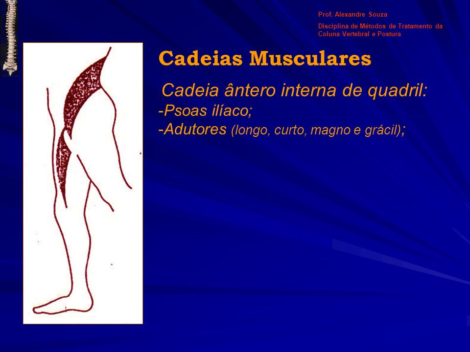 Cadeia ântero interna de quadril: -Psoas ilíaco; -Adutores (longo, curto, magno e grácil) ; Cadeias Musculares Prof. Alexandre Souza Disciplina de Mét