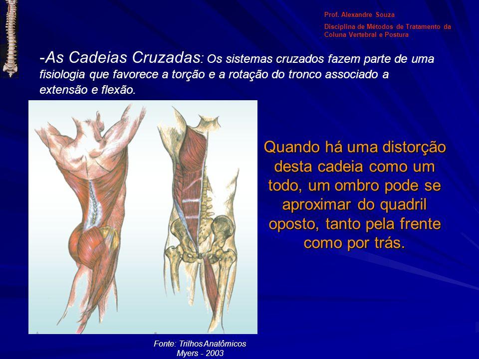 -As Cadeias Cruzadas : Os sistemas cruzados fazem parte de uma fisiologia que favorece a torção e a rotação do tronco associado a extensão e flexão. Q
