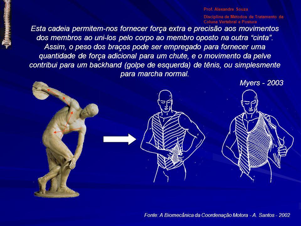 Esta cadeia permitem-nos fornecer força extra e precisão aos movimentos dos membros ao uni-los pelo corpo ao membro oposto na outra cinta. Assim, o pe