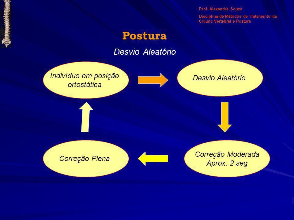 Postura Desvio Aleatório Indivíduo em posição ortostática Desvio Aleatório Correção Moderada Aprox. 2 seg Correção Plena Prof. Alexandre Souza Discipl