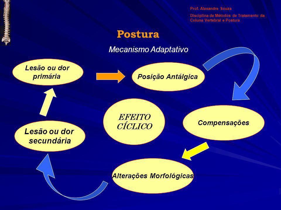 Postura Mecanismo Adaptativo Lesão ou dor primária Posição Antálgica Compensações Alterações Morfológicas Lesão ou dor secundária EFEITO CÍCLICO Prof.