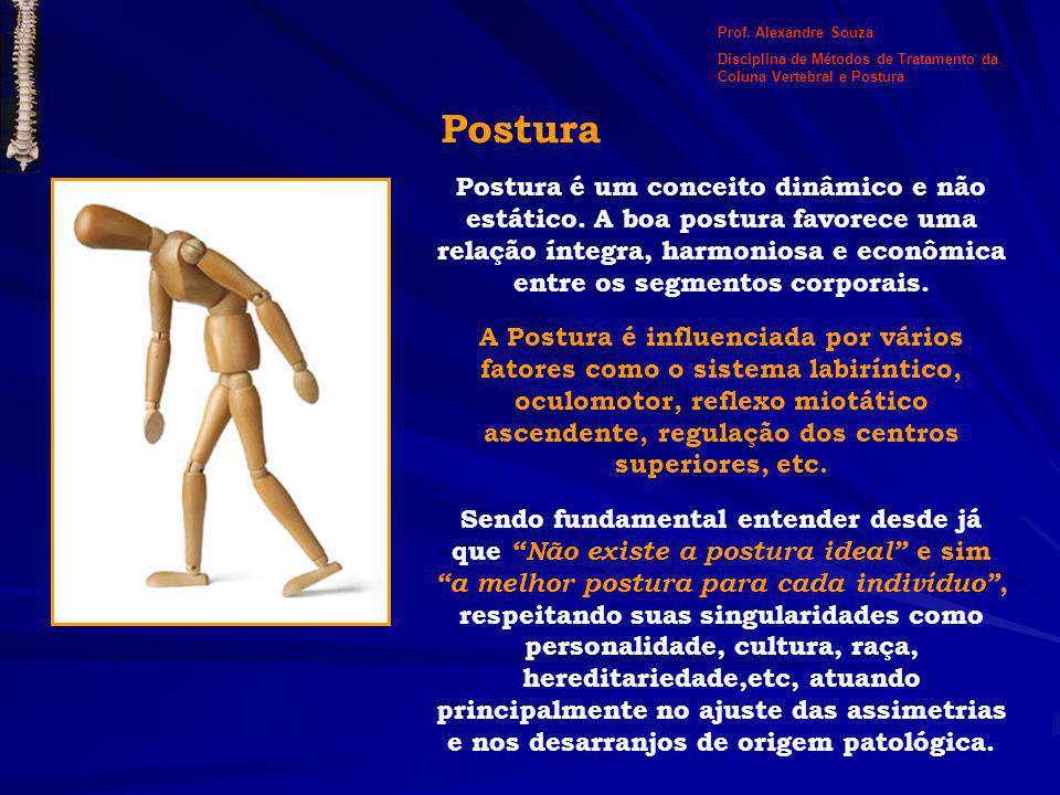 Postura Postura é um conceito dinâmico e não estático. A boa postura favorece uma relação íntegra, harmoniosa e econômica entre os segmentos corporais
