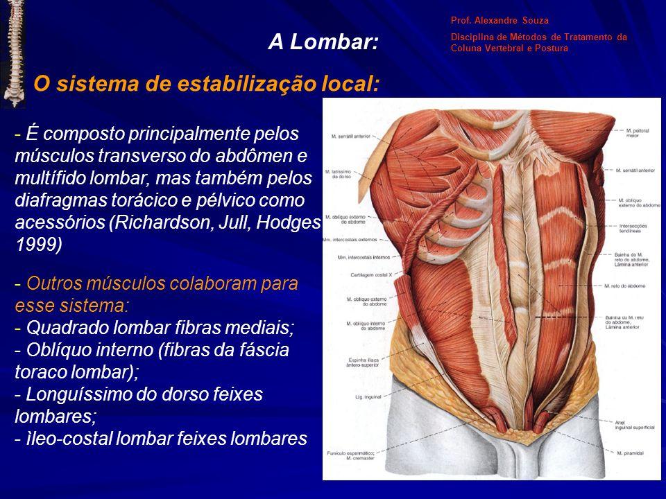 A Lombar: O sistema de estabilização local: - É composto principalmente pelos músculos transverso do abdômen e multífido lombar, mas também pelos diaf