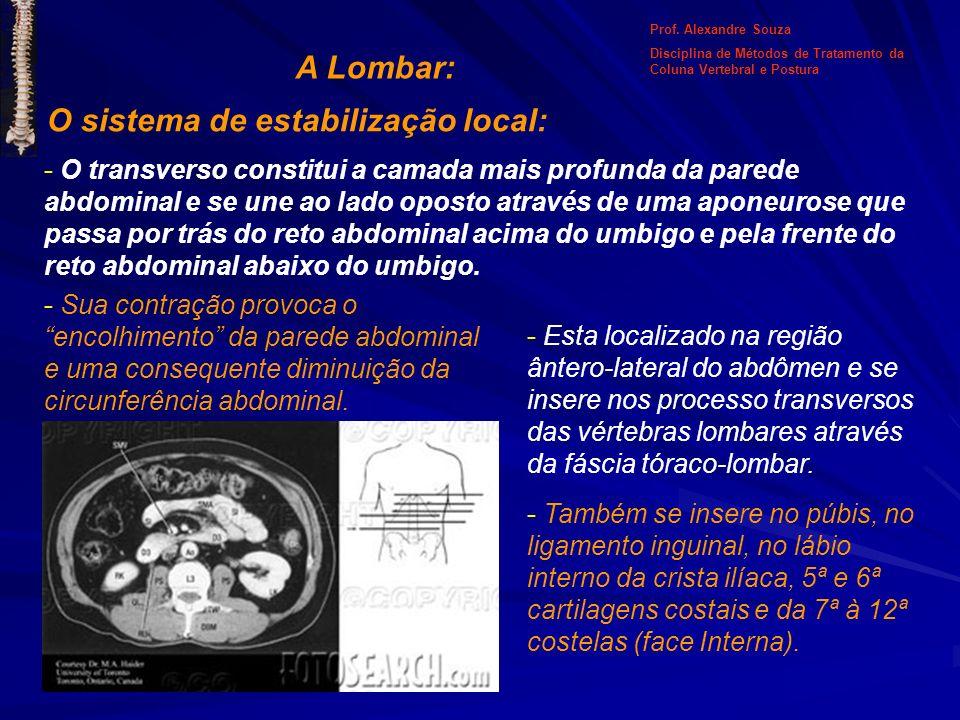 A Lombar: O sistema de estabilização local: - O transverso constitui a camada mais profunda da parede abdominal e se une ao lado oposto através de uma