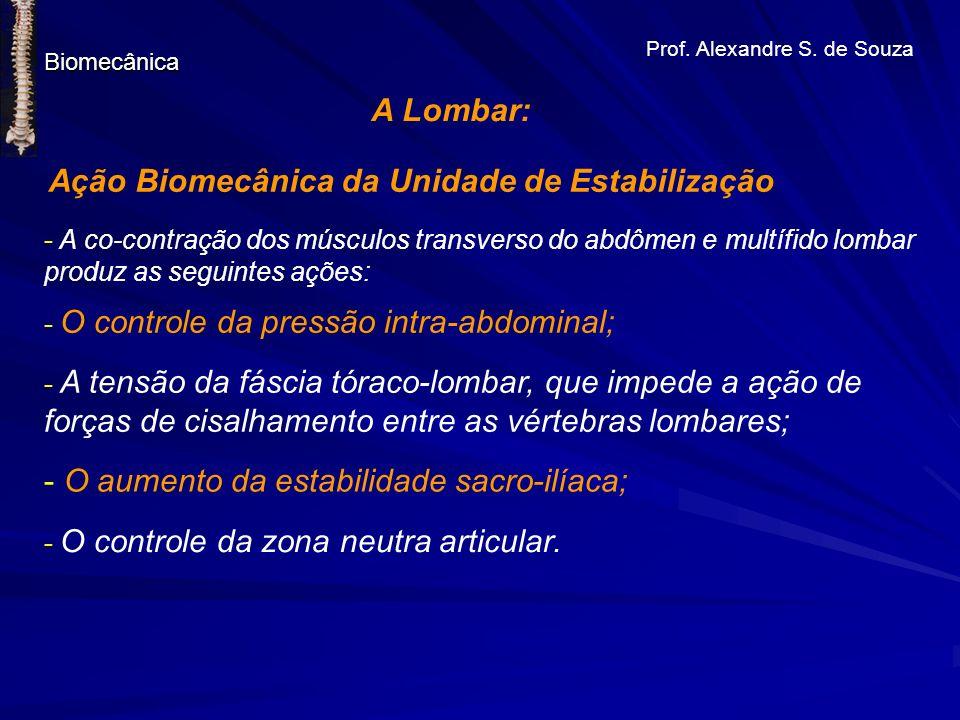 Prof. Alexandre S. de Souza Biomecânica A Lombar: Ação Biomecânica da Unidade de Estabilização - A co-contração dos músculos transverso do abdômen e m