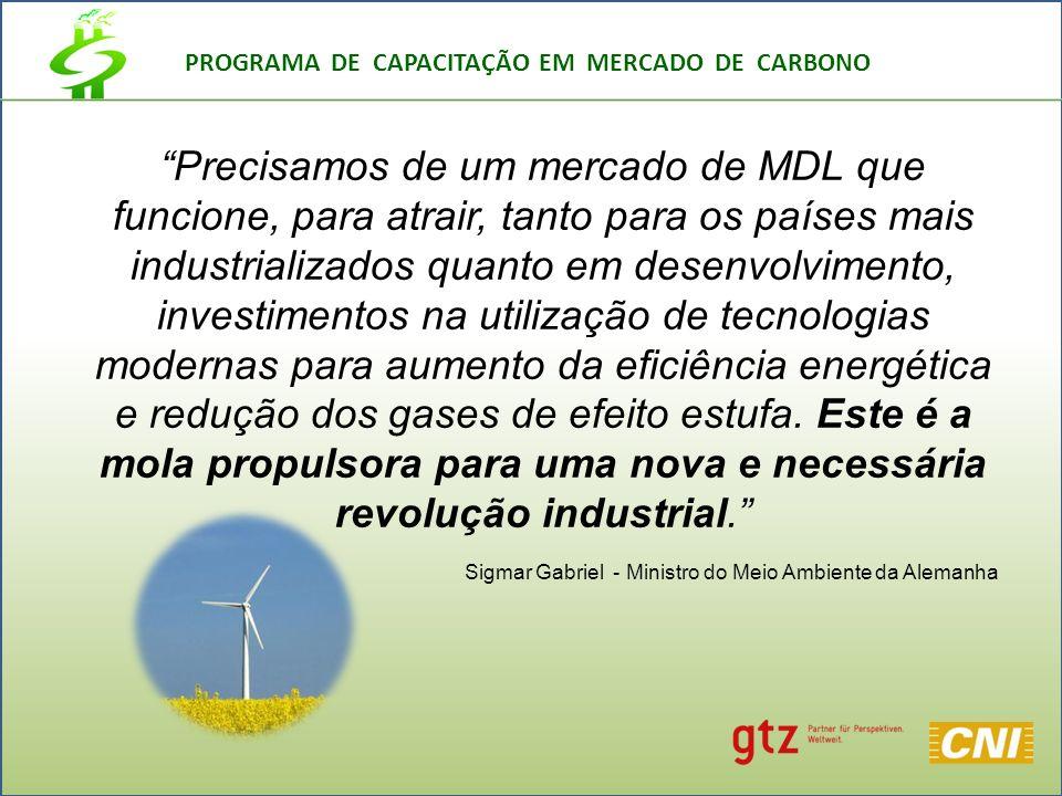 PROGRAMA DE CAPACITAÇÃO EM MERCADO DE CARBONO Precisamos de um mercado de MDL que funcione, para atrair, tanto para os países mais industrializados quanto em desenvolvimento, investimentos na utilização de tecnologias modernas para aumento da eficiência energética e redução dos gases de efeito estufa.
