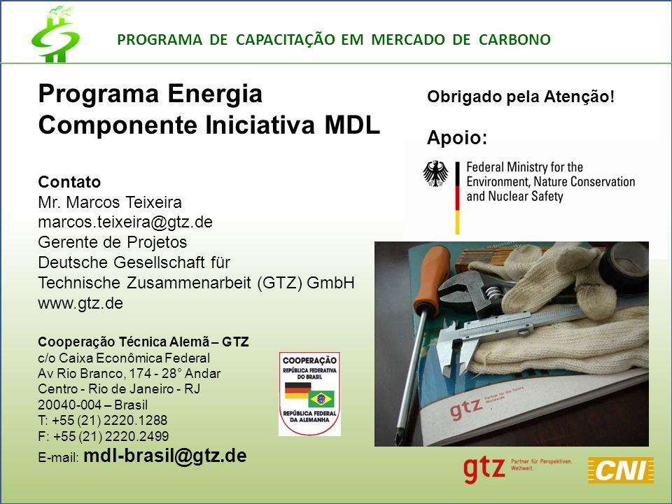 PROGRAMA DE CAPACITAÇÃO EM MERCADO DE CARBONO Programa Energia Componente Iniciativa MDL Contato Mr.