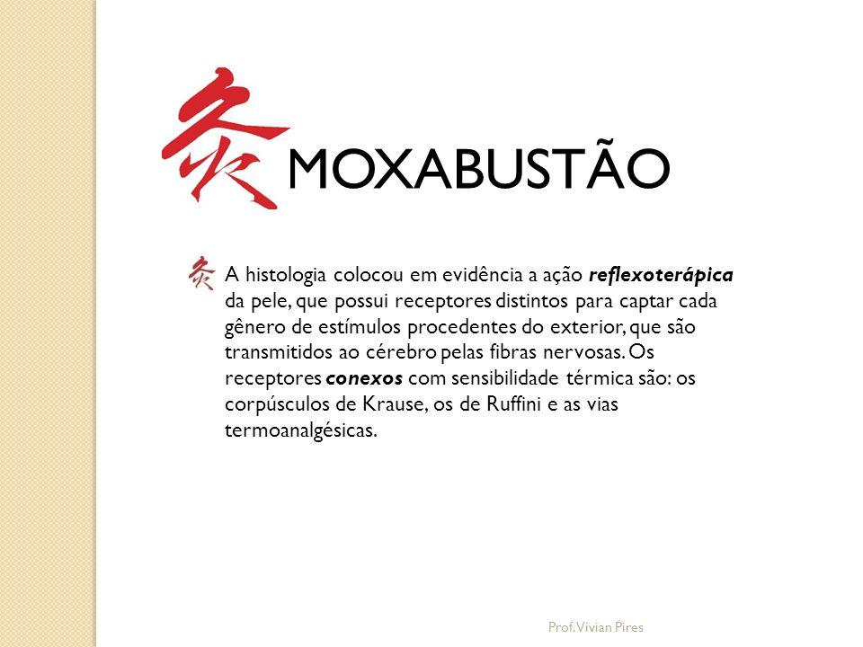 MOXABUSTÃO Origem da Artemísia e suas propriedades Prof. Vivian Pires