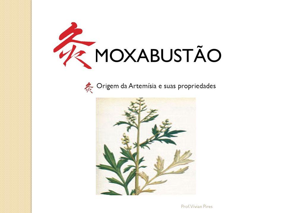 MOXABUSTÃO Tradição na China: Folhas penduradas nas portas e colocadas no arroz moti Prof.