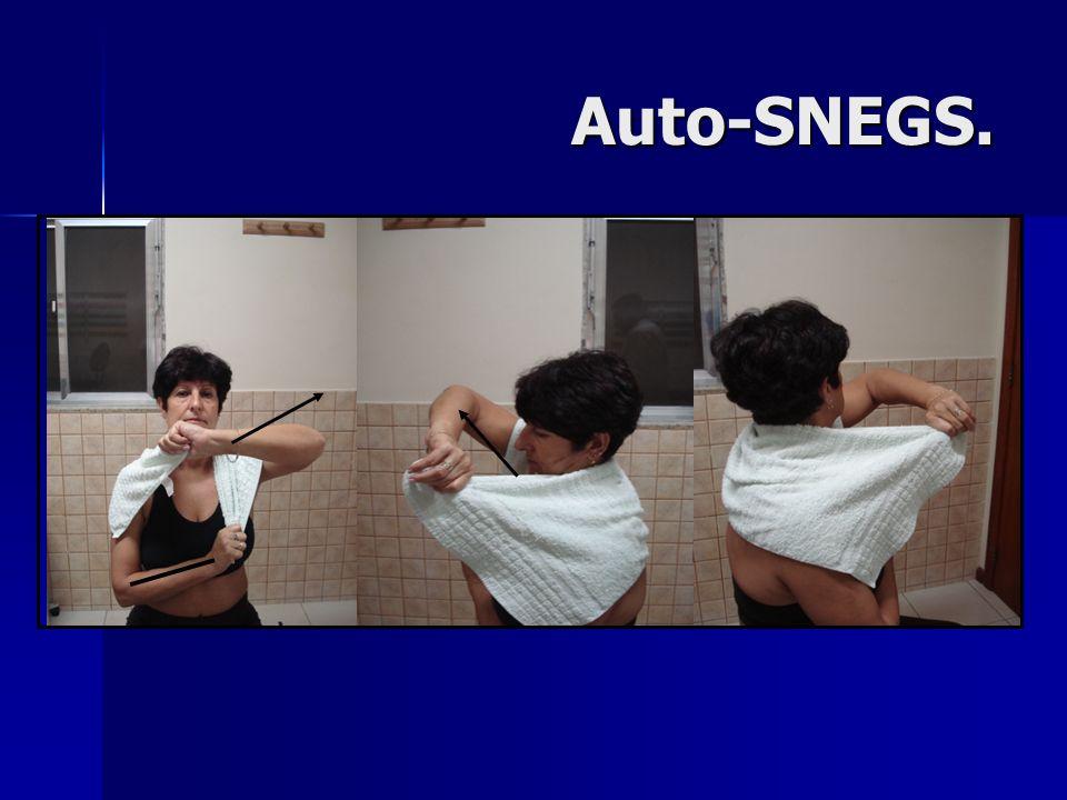 Auto-SNEGS.