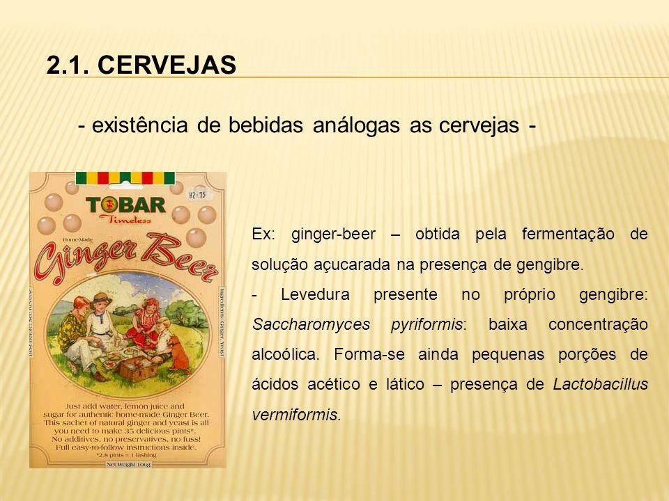 2.1. CERVEJAS - existência de bebidas análogas as cervejas - Ex: ginger-beer – obtida pela fermentação de solução açucarada na presença de gengibre. -